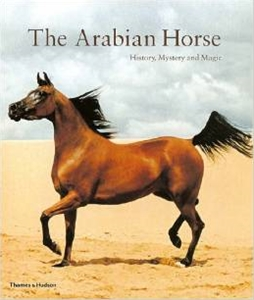 The Arabian Horse